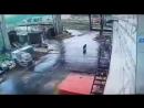 В Тынде медведь бежал за сотрудником депо