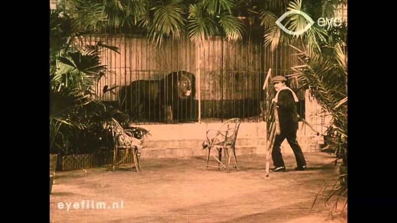 La Maison des Lions