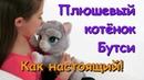Интерактивный котёнок Бутси (Bootsie) FurReal Friends от Hasbro (Хасбро). Покорми котёнка