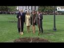 Ils sont beaux les maîtres du monde civilisé même pas fichu de faire semblent de planter correctement un arbre