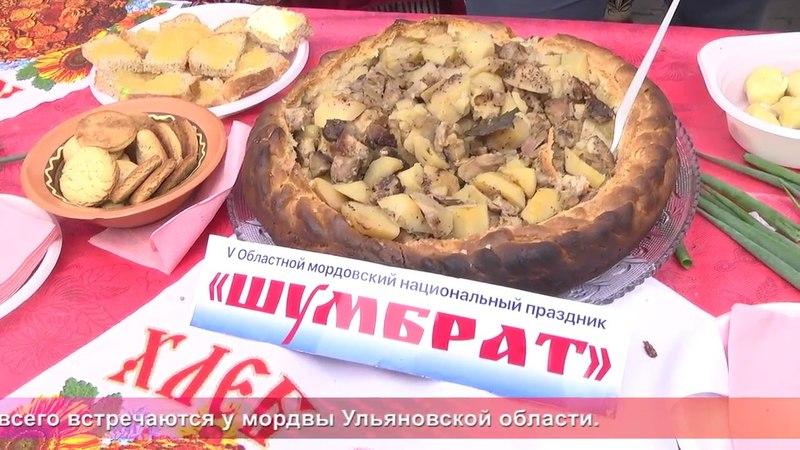 Од пинге Мордовский праздник Шумбрат в Ульяновске