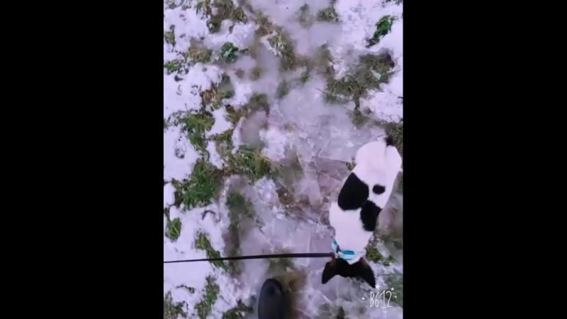 Борьба со льдом 😉