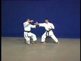 Pinan Yodan _ Kata & Bunkai _Shito Ryu karate do _ Hidetoshi Nakahashi
