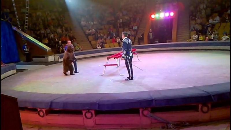 цирк мишки 2