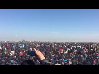 Шардара көкпар - 2018