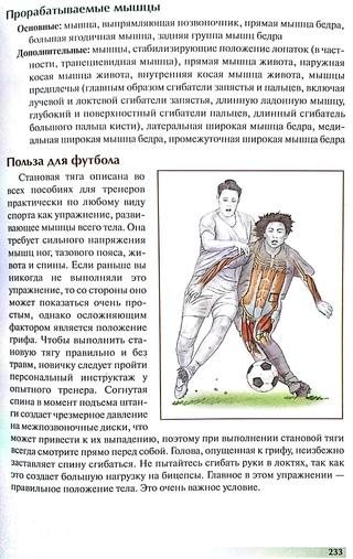АНАТОМИЯ ФУТБОЛА ДОНАЛЬД КИРКЕНДАЛЛ СКАЧАТЬ БЕСПЛАТНО