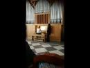 Венера Трушникова - Live