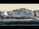 Россия от края до края. Арктика.