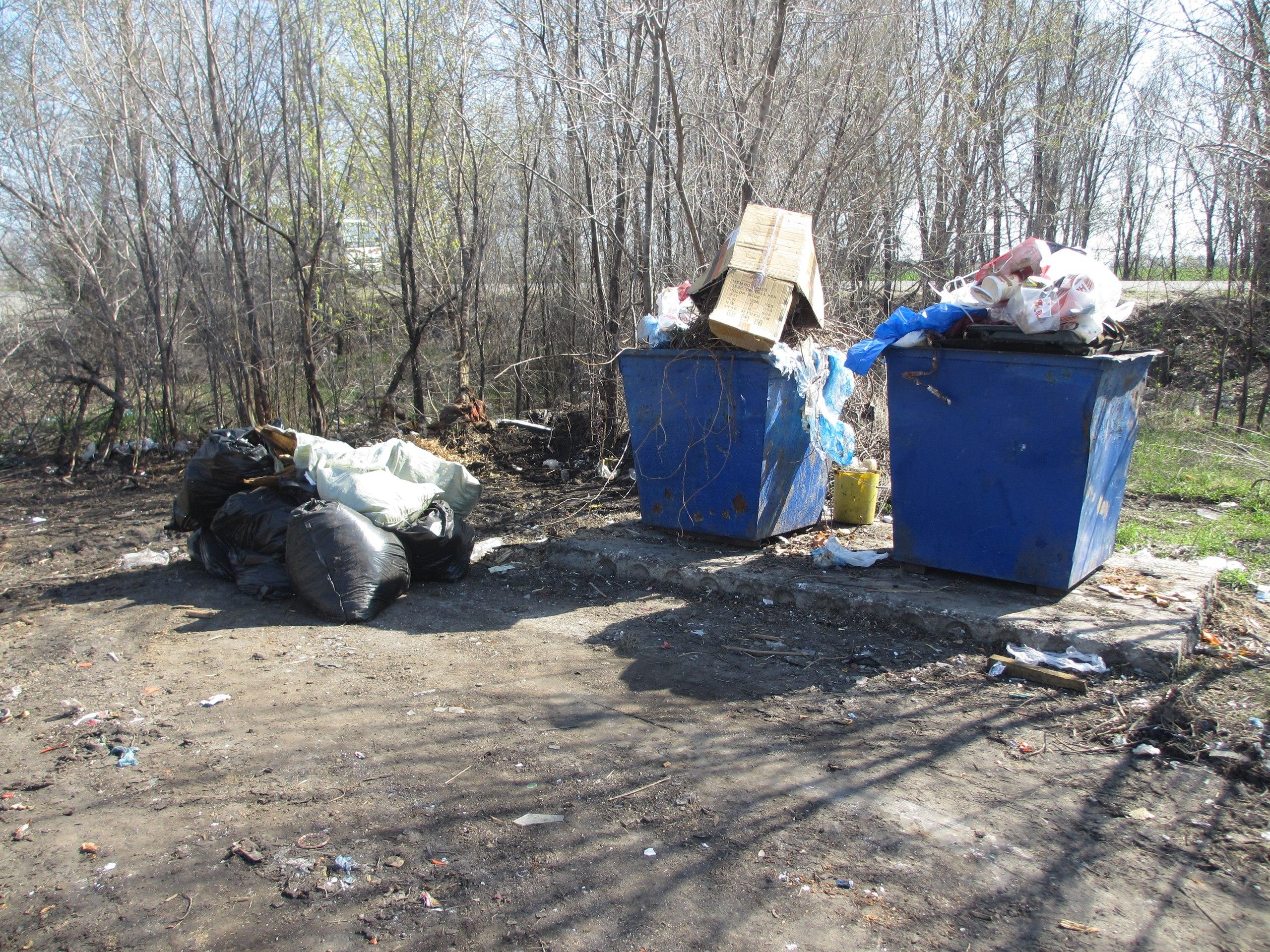 Сызрань завалена мусором