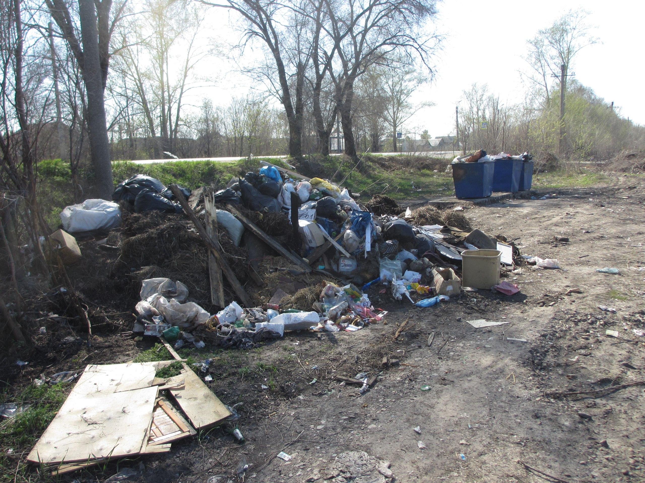 Сызрань закопана в горе мусора