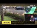 Телеканал Москва 24 побывал на месте гибели девочки от урагана в Москве
