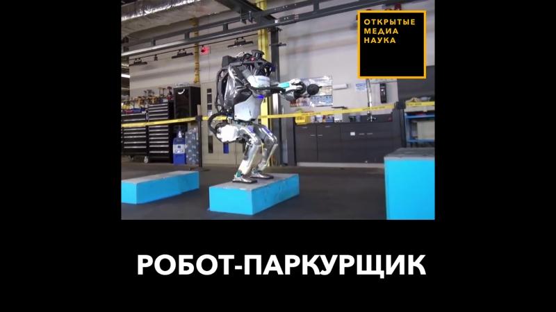Робот-паркурщик