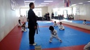 Amazing Karate Of Cute Kid | Viral Video to Laugh | Lol