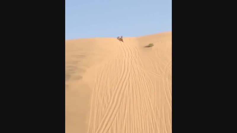 Арабы развлекаются