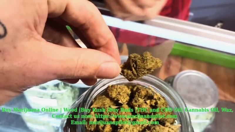 Purchase Cannabis, Marijuana, Weed, THC/CBD Oil, VapePens, Online at www.marijuanapilot.com