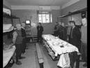 Как жили петухи в тюрьмах СССР