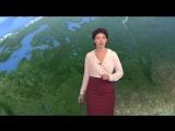 Погода сегодня, завтра, видео прогноз погоды на 4.10.2018 в России и мире