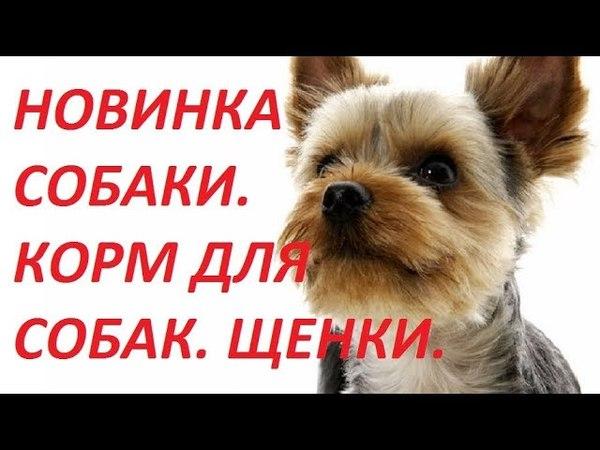 Новинка 2018. Собаки. Корм для собак. Щенки. Корма премиум.