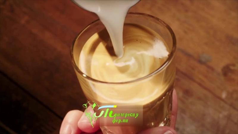 Баристы советуют кофе с молоком Тригорской фермы