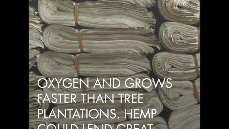 5 Uses For Industrial Hemp You Wont Learn From Mainstream Media.