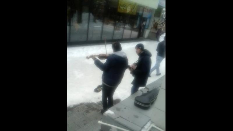 ниши уличные музыканты. нехило лабают