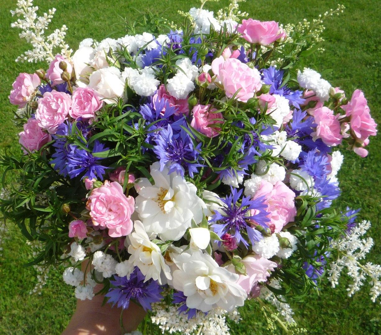 Когда лучше срывать цветы