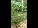 Еловская долина водопадов