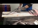 Hake fish filleting Fish factory in Ireland Разделка рыбы Хек