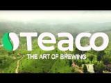 Чайно-кофейная компания TEACO: путь к успеху
