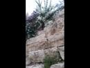 Израиль двор