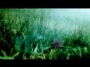 Enigma - Silence Must Be Heard