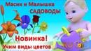 Мультики для самых маленьких Масик и Малышка садоводы Учим виды цветов для детей малышей