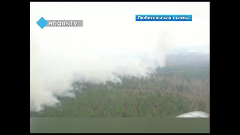 Двое лесников погибли на пожаре в Курумканском районе