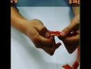 как правильно разделать краба стригуна