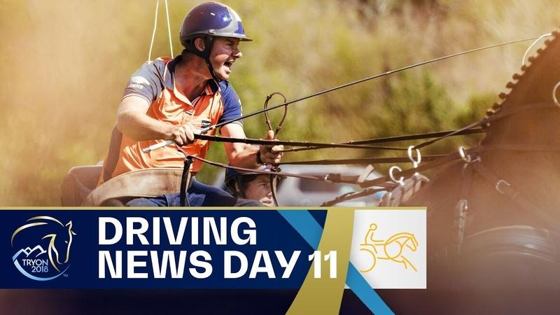 Koos de Ronde convinces at Driving Marathon | Driving | FEI World Equestrian Games 2018