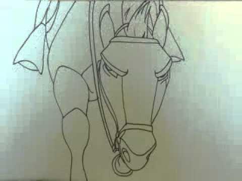 Spirit Stallion of the Cimarron Animation