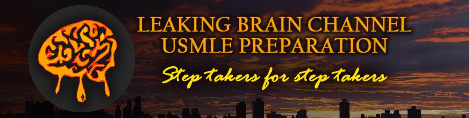 Leaking Brain Channel (USMLE preparation)   ВКонтакте