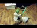 Йода против сил тьмы (VIDEO ВАРЕНЬЕ)