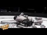 UFC VINE Цена Понтов 0