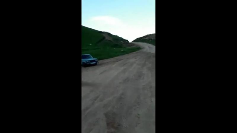 Зверь и профи водитель !)