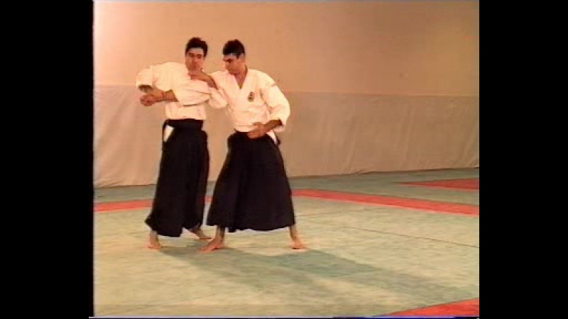 Aikibudo tradition et evolution(alain floquet)