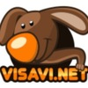 Visavi.net