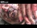 Шахид после взрыва некоторое время оставался в сознании
