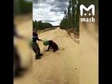 В Якутии мужики пытались спасти мишку с канистрой на голове