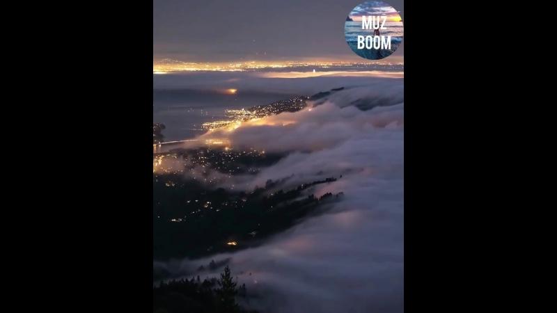 Вот это туман