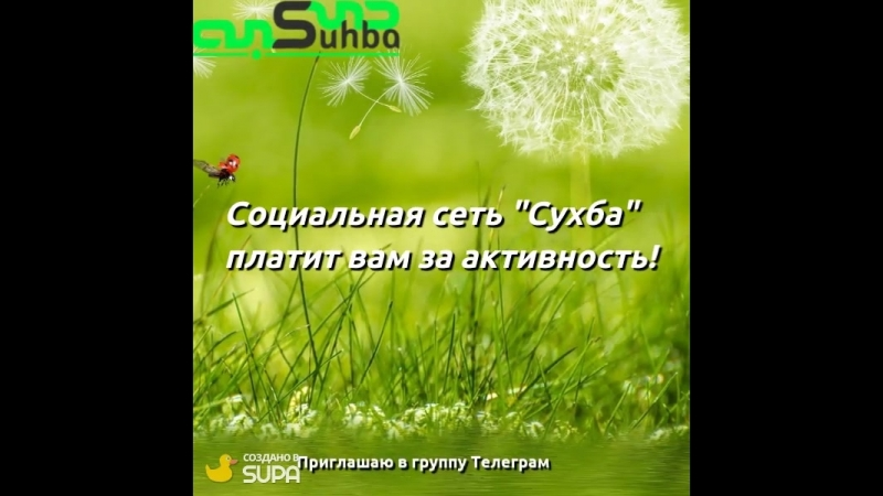 Зеленый интернет Сухба