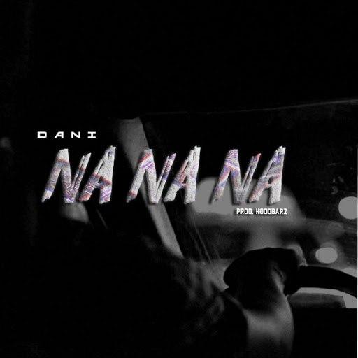Dani альбом Na Na Na