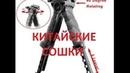 Тактическая Рукоятка сошки Fab Defense Т-POD G2, Китайская копия, обзор, недостатки!