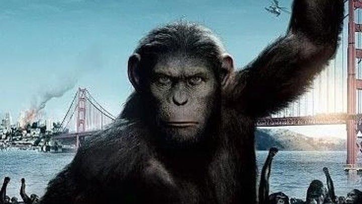Восстание планеты обезьян (Фантастика, Боевик, Приключенческий фильм)2011