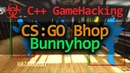 C Game Hacking - How to make a Bunnyhop for CS:GO Hack Tutorial (Requested)